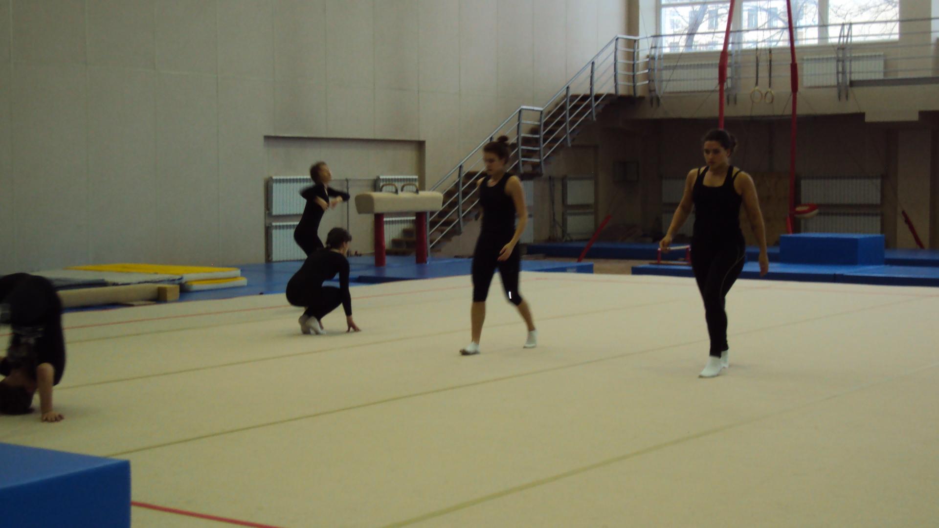Региональный этап Всероссийской олимпиады школьников Санкт-Петербурга по физической культуре