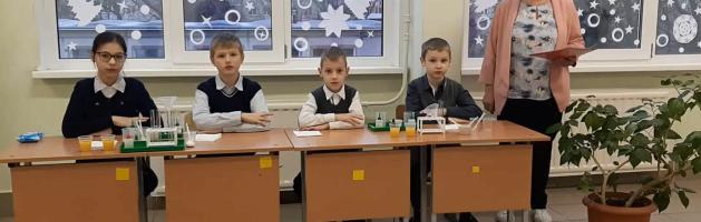 Мастер-класс «Организация исследовательской деятельности в начальной школе»